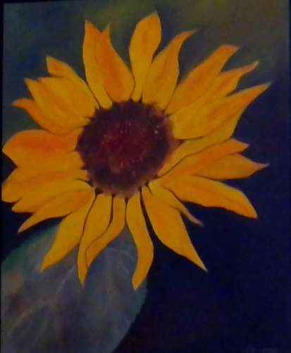 "Big Sunflower, Acrylic, 24""x24"" (framed: Gallery size), $$110.0000"